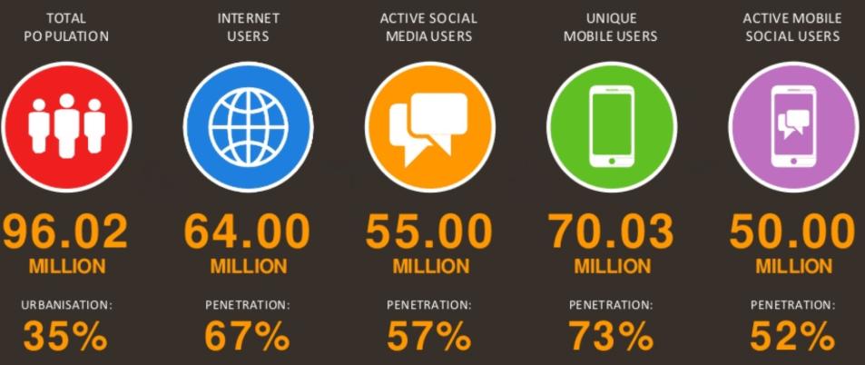 giới thiệu người dùng internet tại việt nam